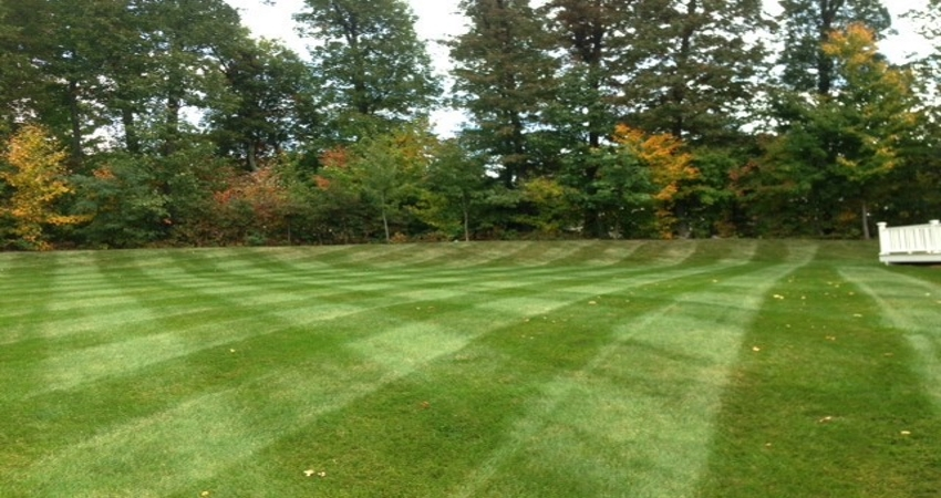 Lawn Patterns Millbury